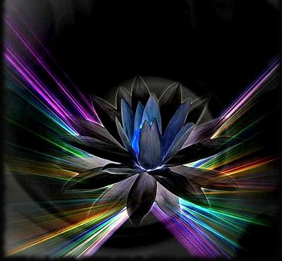lotusblue